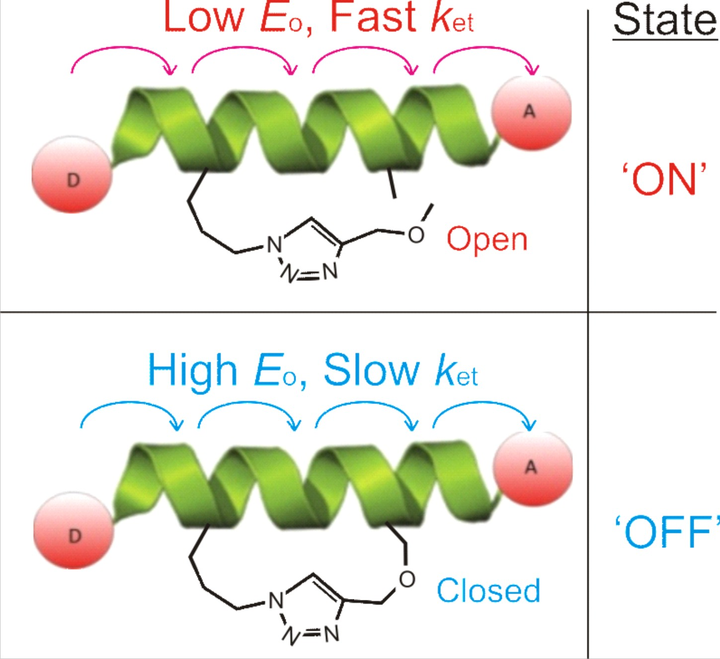 A direct link between backbone rigidity and electron transfer has been reported, providing a novel approach for the development of switchable molecular components.