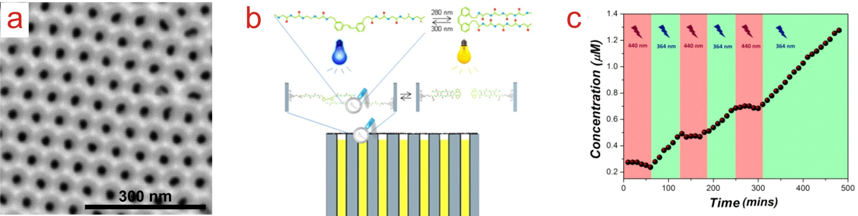 Photo-Switchable Membranes based on Peptide-Modified Nanoporous Anodic Alumina: Toward Smart Membranes for On-Demand Molecular Transport